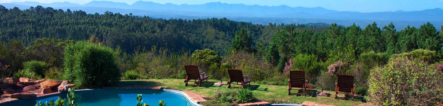 Views from The Fynbos Ridge Swimming Pool