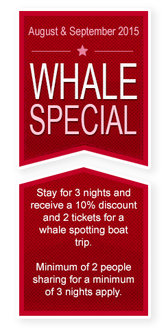 Whale Special 2015